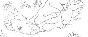 Coloring Page Horse for Kids
